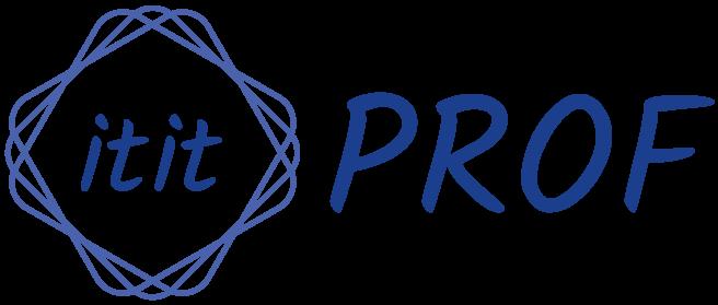 it-it-prof.de